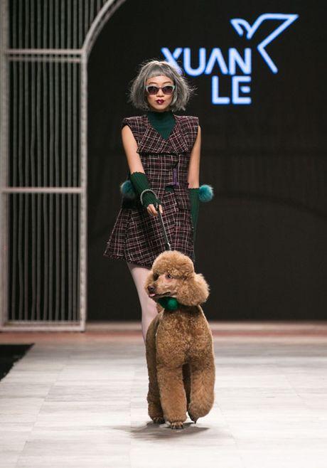 Nhung man trinh dien 'da mat' nhat o Vietnam International Fashion Week - Anh 6