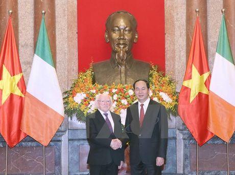 Chu tich nuoc Tran Dai Quang hoi dam voi Tong thong Ireland - Anh 1
