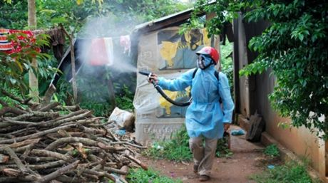 TP.HCM: Lo la chong dich Zika se bi xu ly nghiem - Anh 1