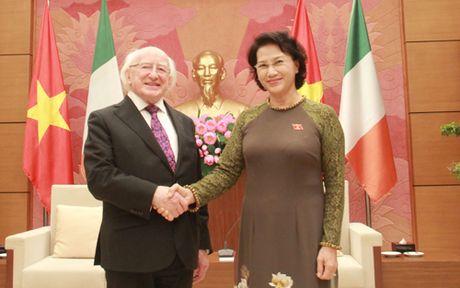 Chu tich Quoc hoi Nguyen Thi Kim Ngan tiep Tong thong Ireland - Anh 1