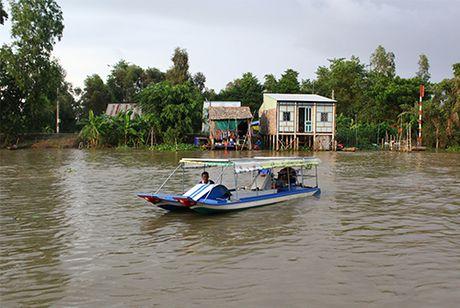 Can canh thuyen nang luong mat troi doc dao cua nong dan Dong Thap - Anh 2