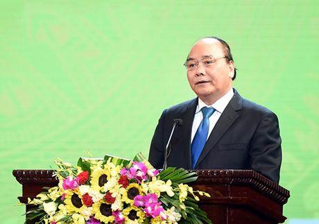 Thu tuong Nguyen Xuan Phuc: Thuong hieu tot la tai san quoc gia - Anh 1