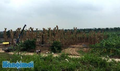 TIN NONG ngay 8/11: Phat hien 500 qua phao hinh luu dan tren mot chiec xe tai - Anh 1
