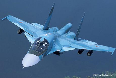 Tinh hinh Syria 8/11: Kremlin binh luan ve quyet dinh ngung nem bom tai Aleppo - Anh 2