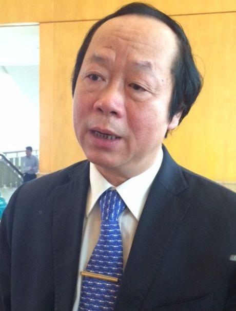 Thu truong Bo TNMT: 'Trung uong cap phep nhung dia phuong phai quan ly' - Anh 1