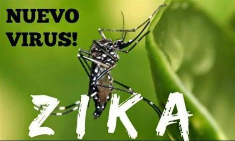 Troi ret co han che vi rut Zika? - Anh 1