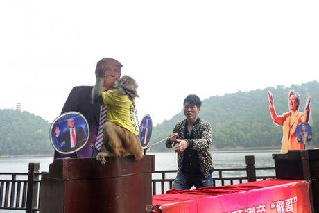 Bau cu Tong thong khong chi nong o My - Anh 2