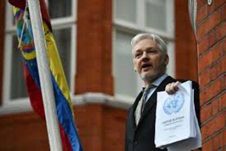 Nha sang lap WikiLeaks sap bi tham van - Anh 1