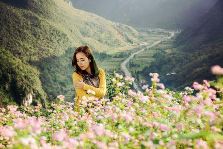 Lan dau to chuc Le hoi hoa tam giac mach tai Ha Noi - Anh 2