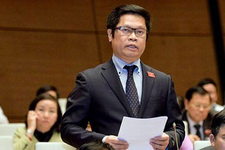 Du an Luat Quan ly ngoai thuong: Lo 'them trong' cho doanh nghiep - Anh 1