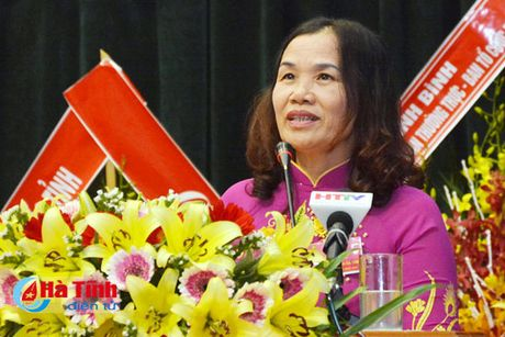 Dong gop tri tue, xay dung to chuc Hoi Phu nu Ha Tinh vung manh - Anh 2