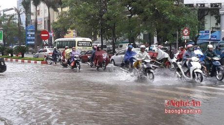 Nguoi dan TP. Vinh chat vat di chuyen trong bien nuoc - Anh 1
