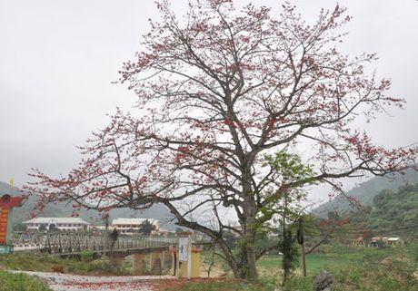 Bo lo co hoi lam du lich giua Truong Son - Anh 2