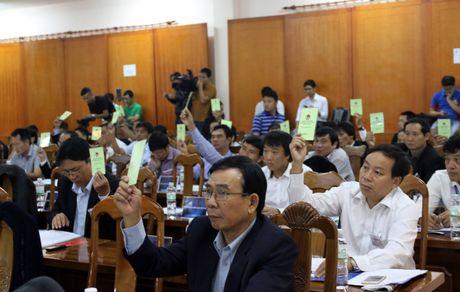 Dai hoi VFF: Sang chen lan toi - Anh 2