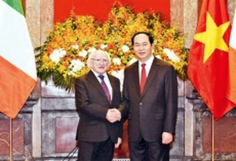 Chu tich nuoc Tran Dai Quang don, hoi dam; Chu tich QH Nguyen Thi Kim Ngan tiep Tong thong Ai-len M.Hich-gin - Anh 1