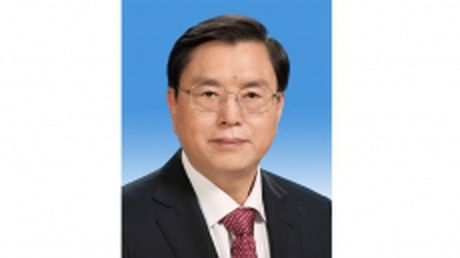 Chu tich Quoc hoi Trung Quoc Truong Duc Giang bat dau tham huu nghi chinh thuc Viet Nam - Anh 1