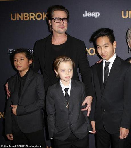 Angelina Jolie tu choi yeu cau nuoi con chung cua Brad Pitt - Anh 2