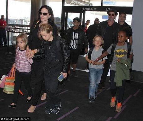 Angelina Jolie tu choi yeu cau nuoi con chung cua Brad Pitt - Anh 3