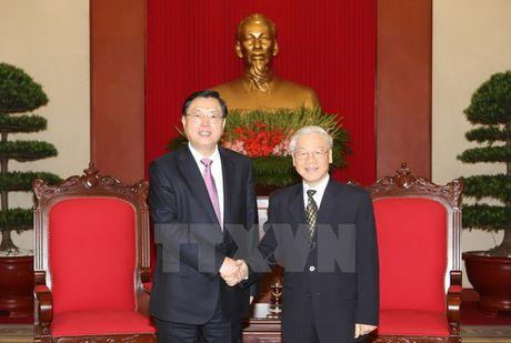 Tong Bi thu Nguyen Phu Trong tiep Uy vien truong Nhan dai Trung Quoc - Anh 1