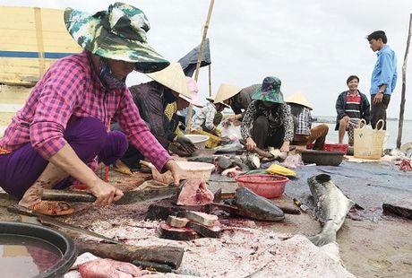 Quang Ngai: Nu Bi thu huyen va chuyen 'khoi xuong' ban ca giup dan - Anh 3