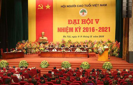 Dai hoi dai bieu lan thu V Hoi Nguoi cao tuoi Viet Nam thanh cong tot dep - Anh 1