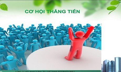 Cong ty Co phan dau tu phat trien Chuoi toan Viet Nam: 'Da cap bien tuong'? - Anh 2