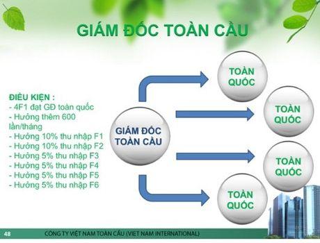 Cong ty Co phan dau tu phat trien Chuoi toan Viet Nam: 'Da cap bien tuong'? - Anh 3