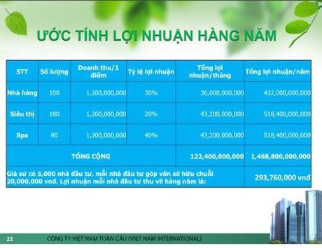 Cong ty Co phan dau tu phat trien Chuoi toan Viet Nam: 'Da cap bien tuong'? - Anh 4