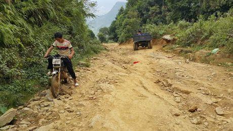 'Lam tac' xe go rung Yen Bai tiet lo 'manh khoe' trum buon go lau - Anh 2