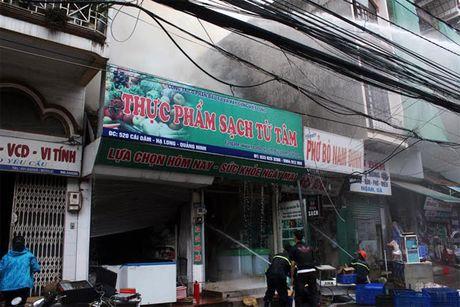 Chay cua hang ban thuc pham sach o TP Ha Long - Anh 1