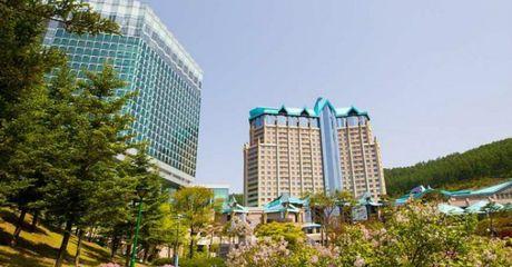 Tap doan Kangwon Land Han Quoc muon dau tu du an co casino tai Da Nang? - Anh 1