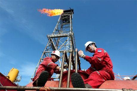 OPEC thay nguon cung dau tho cua doi thu giam - Anh 1
