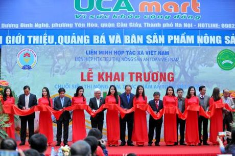 Khai truong 3 sieu thi tieu thu nong san an toan tai Ha Noi - Anh 1