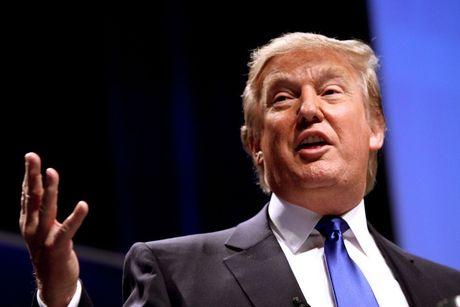 Donald Trump - Tong thong My bao mieng - Anh 2