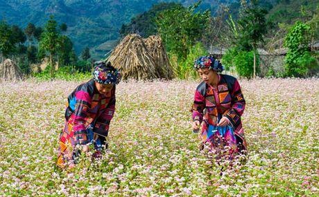 Trai nghiem khong gian van hoa dan toc Mong - Anh 1