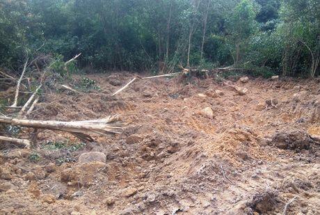 Thanh Hoa: Ngang nhien muc dat trong khu bao ton - Anh 1
