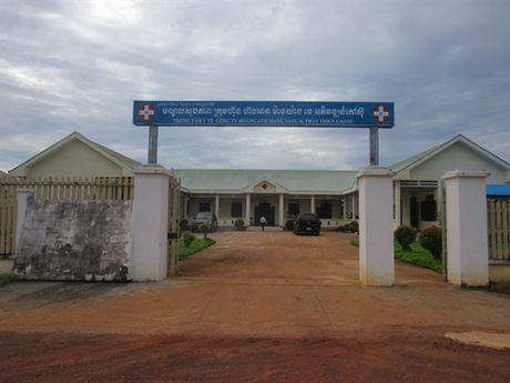 Nhung vuon cay cao su nghia tinh tai Campuchia - Anh 4