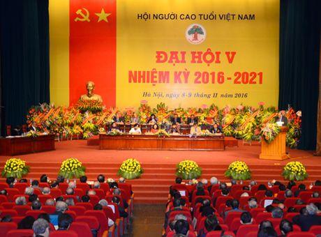 Ba Pham Thi Hai Chuyen lam Chu tich Hoi Nguoi cao tuoi Viet Nam - Anh 1