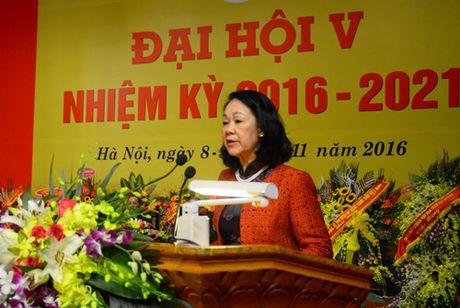 Ba Pham Thi Hai Chuyen lam Chu tich Hoi Nguoi cao tuoi Viet Nam - Anh 2