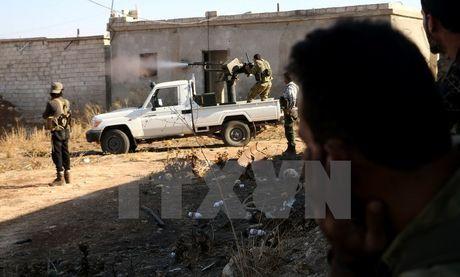 Ao truy to 1 thanh vien phe doi lap Syria toi hanh quyet binh sy - Anh 1