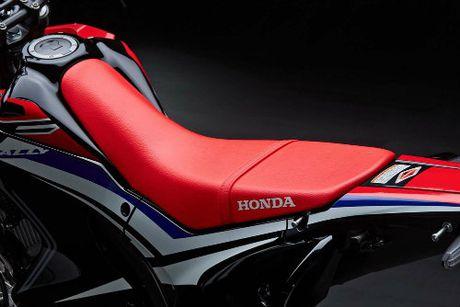 2017 Honda CRF250L Rally ra mat, gia 131 trieu dong - Anh 9