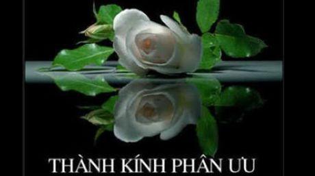 Trung ta Nguyen Huu Tan tu tran - Anh 1