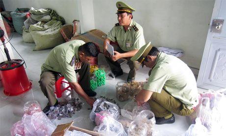 Tich thu 21.500 don vi san pham thuoc khong co nguon goc - Anh 1