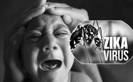 WHO tuyen bo tinh trang khan cap dich virus Zika - Anh 1