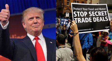 Ong D.Trump dac cu tong thong My: Dung voi mat hy vong ve TPP - Anh 1