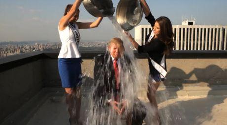 Clip ong Donald Trump bi 2 hoa hau doi nuoc da len dau, mua 2 dua tre vi ban - Anh 1