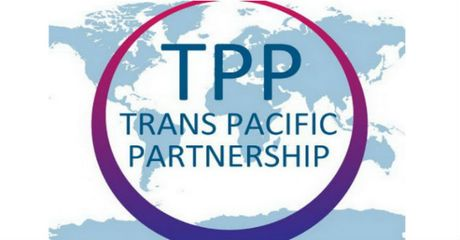Viet Nam se lam gi khi TPP khong duoc thong qua? - Anh 1