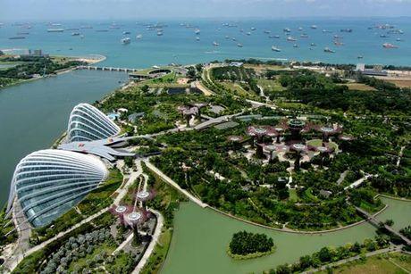Kinh nghiem quan ly do thi hieu qua cua Singapore - Anh 1