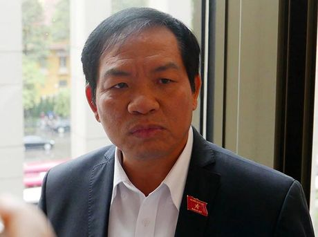 'Dung dien hat nhan Ninh Thuan la hop ly, vi no cong dang dung tran' - Anh 1