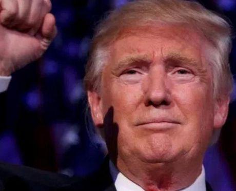 Google va Twitter 'day song' sau chien thang cua Donald Trump - Anh 1